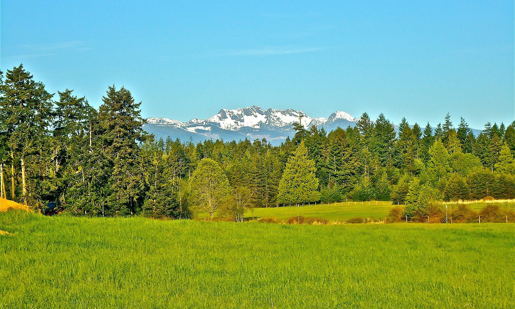 Northwest Bay Ranch